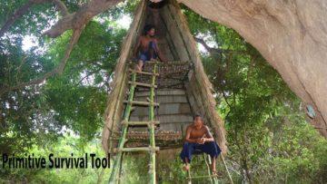 Build Double Storey Tree House
