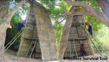 Build three-storey Tree house at Jungle