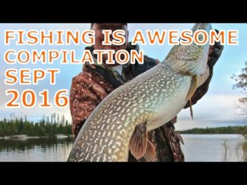 Fishing Is Awesome Compilation September 2016