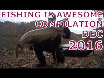 Fishing Is Awesome December 2016