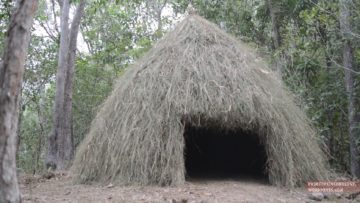 Primitive Technology: Grass hut
