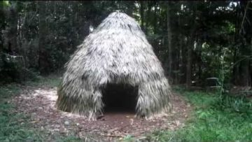 Primitive Technology: Thatched Dome Hut